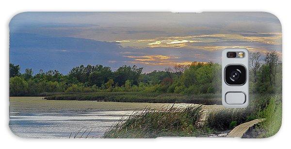 Golden Sunset Over Wetland Galaxy Case