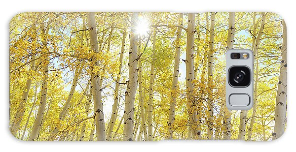 Galaxy Case featuring the photograph Golden Sunshine On An Autumn Day by James BO Insogna