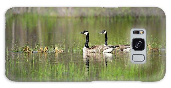 Goose Family #5 Galaxy Case