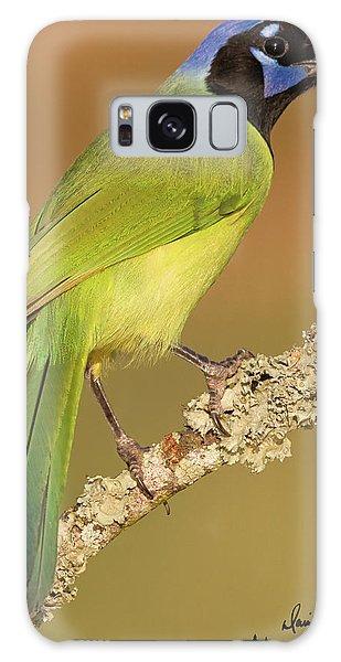 Gorgeous Green Jay Galaxy Case