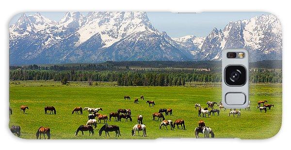 Teton Range Galaxy Case - Grand Teton National Park by Andrew Zarivny