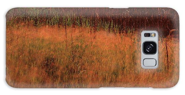 Grasses And Sugarcane, Trinidad Galaxy Case