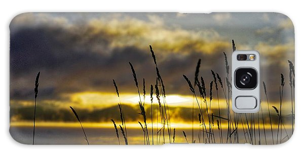 Grassy Shoreline Sunrise Galaxy Case
