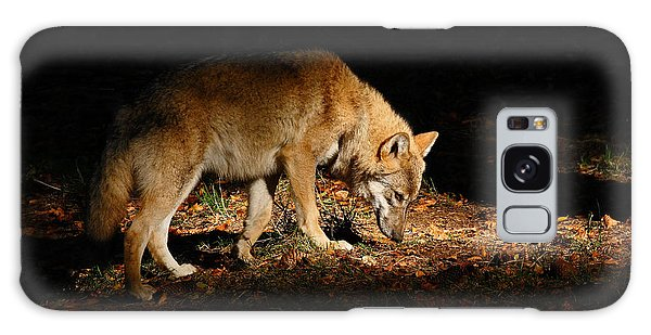 Furry Galaxy Case - Gray Wolf, Canis Lupus, Hidden In The by Ondrej Prosicky