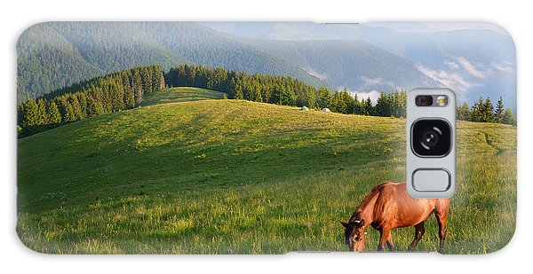 Scenery Galaxy Case - Grazing Horse On Mountain Pasture by Brum