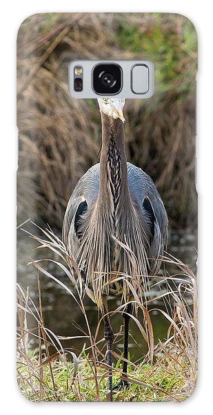 Great Blue Heron Portrait Galaxy Case
