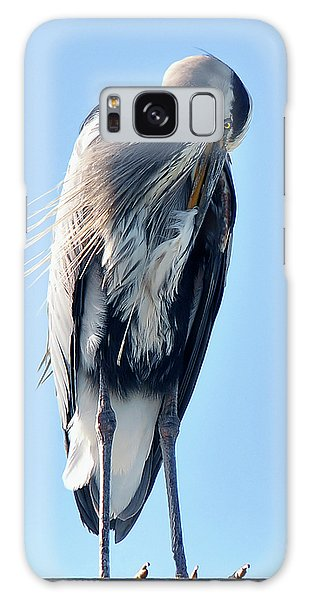 Great Blue Heron Preening On A Roof Galaxy Case