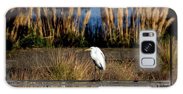 Great Egret Posing By Golden Pampas Grass Galaxy Case