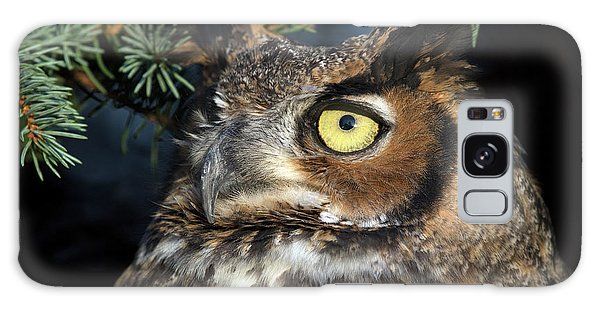 Great Horned Owl 10181801 Galaxy Case