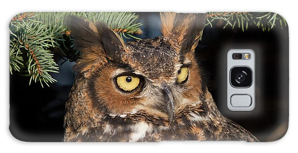 Great Horned Owl 10181802 Galaxy Case
