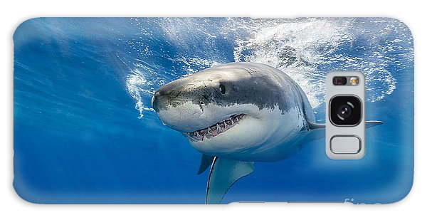 Horizontal Galaxy Case - Great White Shark Swimming Just Under by Wildestanimal