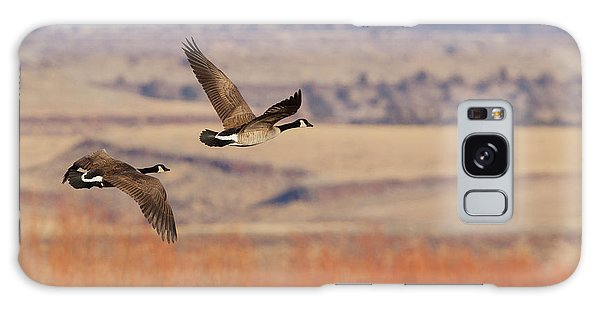 Canada Goose Galaxy Case - Greater Canada Geese Flying by Ken Archer
