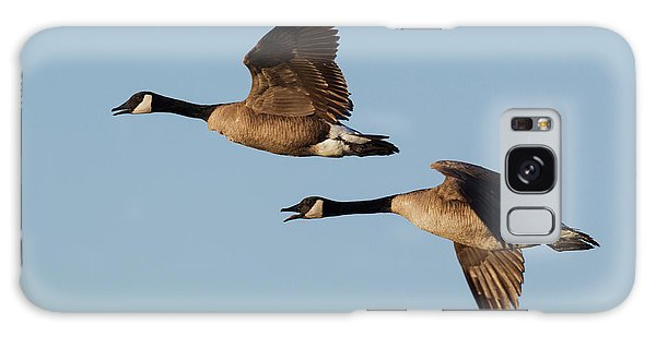 Canada Goose Galaxy Case - Greater Canada Geese Pair Flying by Ken Archer