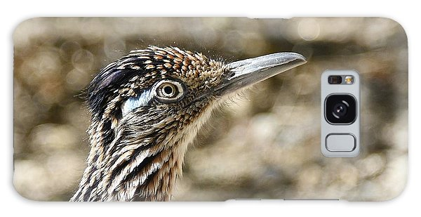 Greater Roadrunner Galaxy Case - Greater Roadrunner by Fraida Gutovich