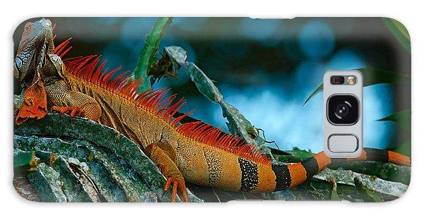 Claws Galaxy Case - Green Iguana, Iguana Iguana, Portrait by Ondrej Prosicky