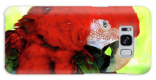 Green-winged Macaw Galaxy Case