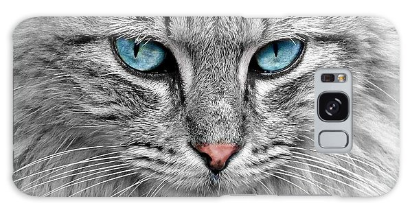 Grey Cat With Blue Eyes Galaxy Case