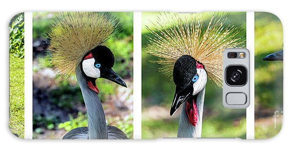 Grey Crowned Crane Gulf Shores Al Collage 1 Galaxy Case