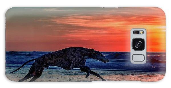 Sighthound Galaxy Case - Greyhound Running On Beach by Travis Patenaude