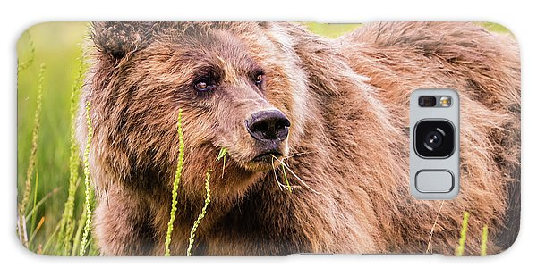 Grizzly In Lake Clark National Park, Alaska Galaxy Case