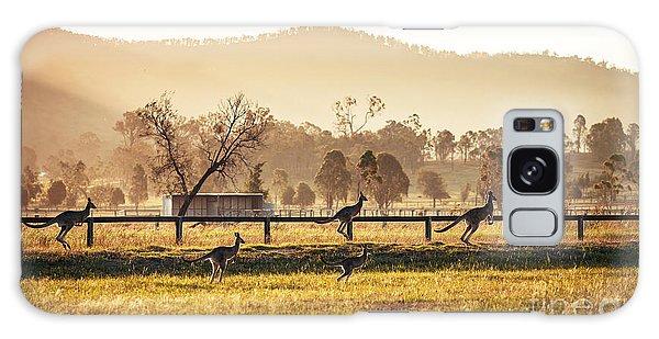Furry Galaxy Case - Group Of Australian Kangaroos At Hunter by Andrey Bayda