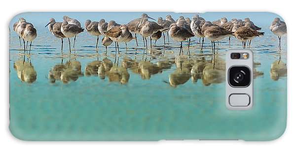 United States Galaxy Case - Group Of Willets Reflection On The by Kris Wiktor