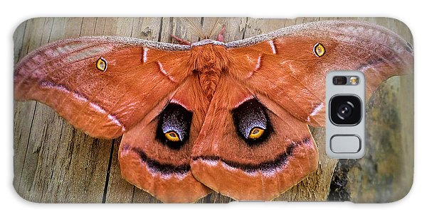 Halloween Moth Galaxy Case