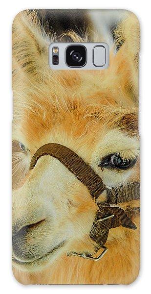 Happy Alpaca Galaxy Case