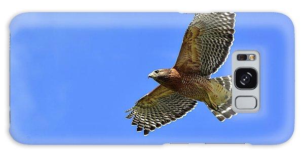 Hawk On The Go Galaxy Case