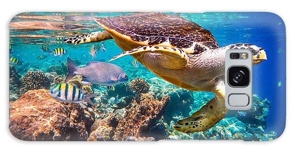 Turtle Galaxy Case - Hawksbill Turtle - Eretmochelys by Andrey Armyagov