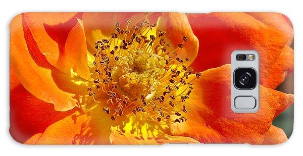 Heart Of The Orange Rose Galaxy Case