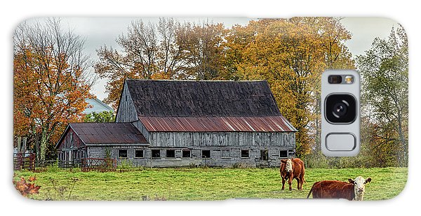 Herefords In Fall Galaxy Case