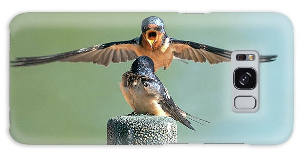 Hey, Babe, Let's Rock N Roll.  Barn Swallows Galaxy Case
