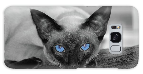 Hey There Blue Eyes - Siamese Cat Galaxy Case