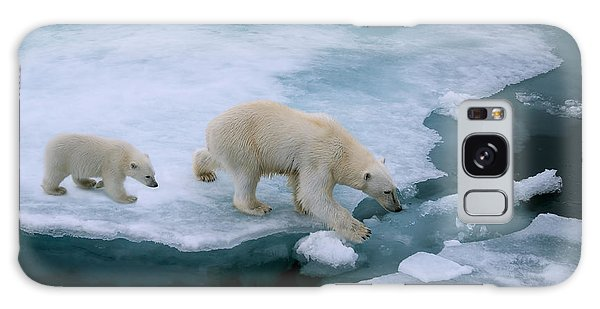 Claws Galaxy Case - High Angle Of Mother Polar Bear And Cub by Floridastock