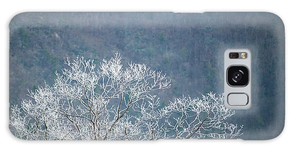 Hoarfrost Collects On Branches Galaxy Case