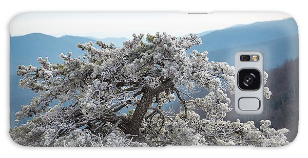 Hoarfrost In The Blue Ridge Mountains Galaxy Case