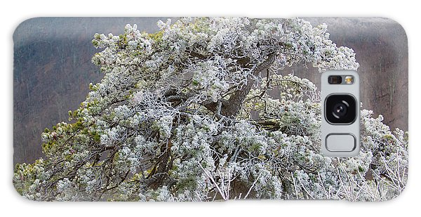 Hoarfrost On Trees Galaxy Case