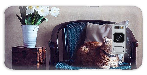 Decorative Galaxy Case - Home Interior, Cat Sitting In An by Daria Minaeva