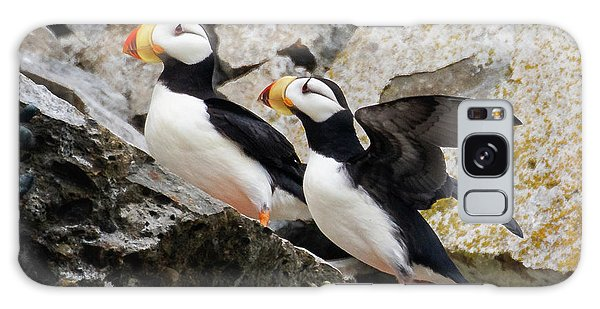 Horned Puffin Pair Galaxy Case