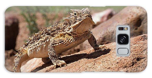 Horny Toad Galaxy Case