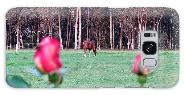 Horse And Roses Galaxy Case