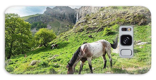 Horse On Balkan Mountain Galaxy Case