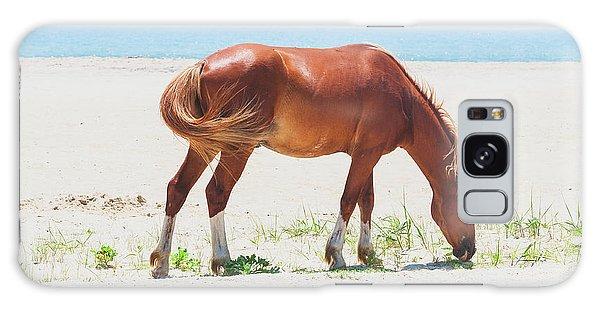 Horse On Beach Galaxy Case