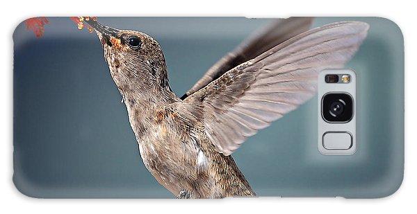 Jewels Galaxy Case - Humming Bird In Flight by Quest786
