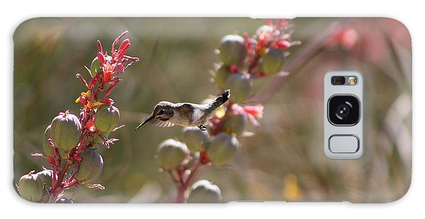 Hummingbird Flying To Red Yucca 1 In 3 Galaxy Case