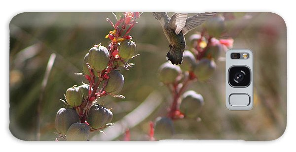 Hummingbird Flying To Red Yucca 3 In 3 Galaxy Case