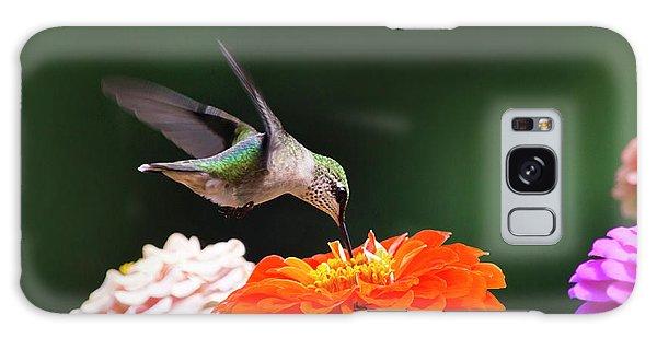 Hummingbird In Flight With Orange Zinnia Flower Galaxy Case