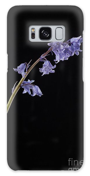 Bluebell Galaxy Case - Hyacinthoides Hispanica by John Edwards