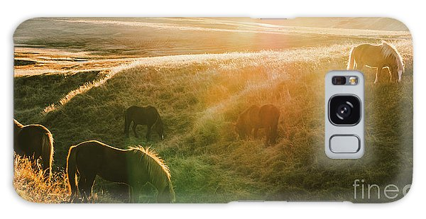 Icelandic Landscapes, Sunset In A Meadow With Horses Grazing  Ba Galaxy Case